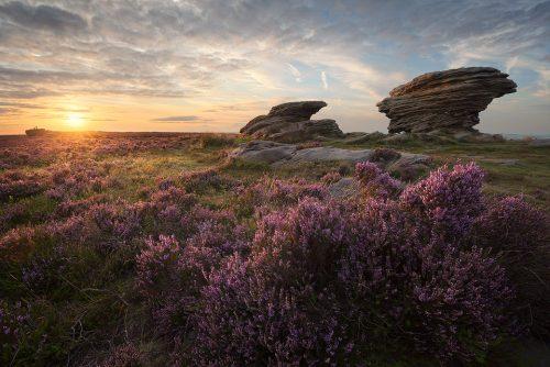 Burbage Moor – Ox Stones