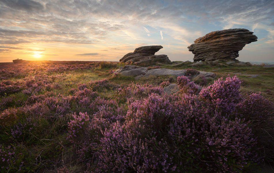 Burbage Moor - Ox Stones