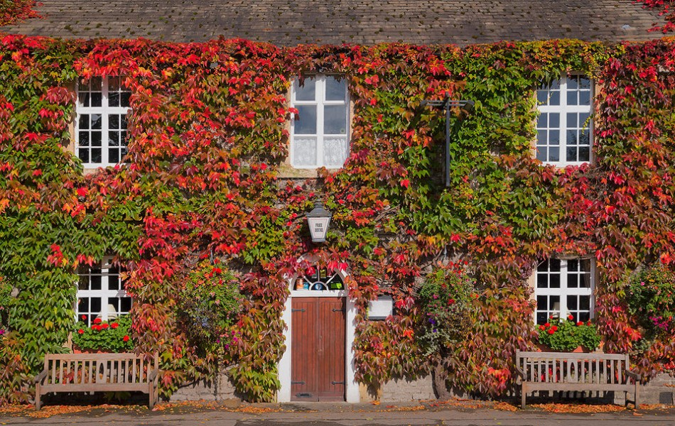 Eyre Arms in Autumn - Peak District Photography
