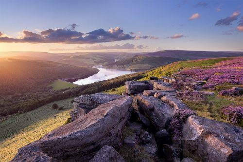 Sunset during the August heather bloom at Bamford Edge overlooking Ladybower Reservoir - Peak District Photography
