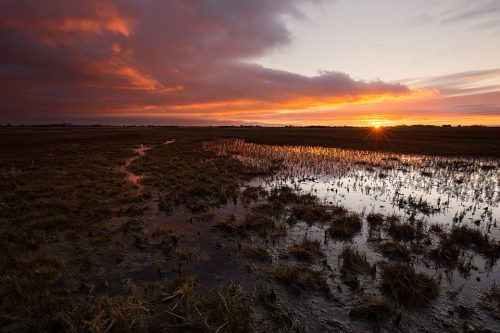 Lincolnshire Marshes