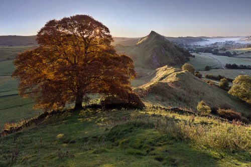 Chrome Hill Autumn Tree - Peak District Photography
