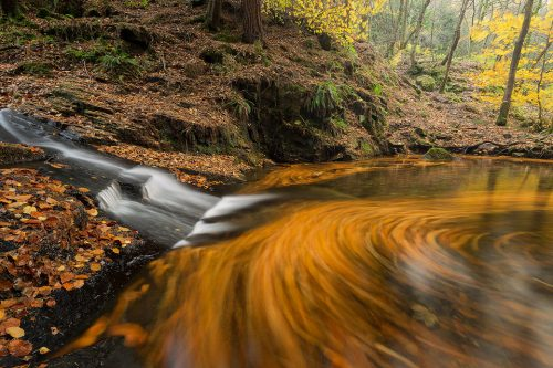 A hidden pool covered with vibrant swirling beech leaves, Beeley Brook, Peak District National Park. Here I used a long exposure to show the autumn leaves as they flowed around this large pool. About Beeley Brook: Beeley Brook runs through the Hell Bank plantation in the Derbyshire Peak District. Rarely visited, the waterfalls are hard to access down the steep sided banks. During Autumn the plantation really comes alive with an explosion of colour and I spent some time photographing the many impressive waterfalls along the whole length of the brook.